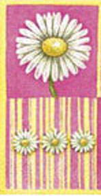 Daisies in Bloom (pink) pocket tissues