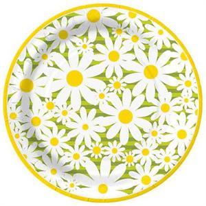 8 plates per package  sc 1 st  Daisythings.com & Daisy Crazy 10.5